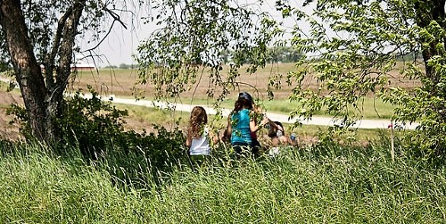 Children Viewing Open Field